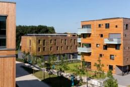 Das 5-geschossige Wohnhaus WOODCUBE (rechts im Bild) besteht fast vollständig aus Holz © Bernadette Grimmenstein / IBA Hamburg GmbH