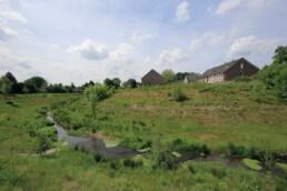 in einer Wiesenlandschaft fließt der Bach, im Hintergrund Wohngebäude